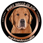 Dogs Breed Usa